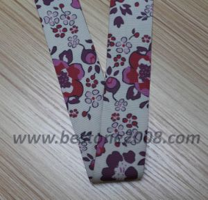 High Quality Polyester Webbing with Printing for Garment #1312-1 pictures & photos