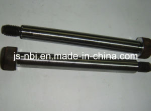 Costom Precision Long Shaft pictures & photos
