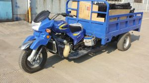 Motocargas Motocarro Three Wheeler Vehicle Motorcycle Motorbike (HD159ZH-3A)