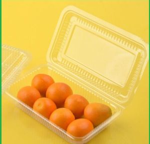 Food Packaging Manufacture Transparent Plastic Food Container for with Divider pictures & photos