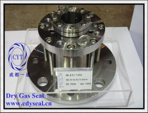 Double Face Dry Gas Seal for Agitator (with bearing) (YTG201KH)