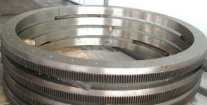 Large Hot Industrial Ring Gear (HED-3032) pictures & photos
