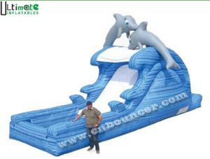 Cute Dolphin Inflatable Water Slide