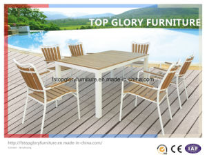 Plasticwood Outdoor Dining Set+Plasticwood Furniture (TG-1292)
