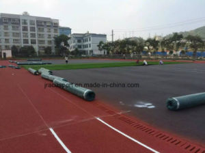 Guangzhou Manufacturer of Various Running Track Surfaces pictures & photos
