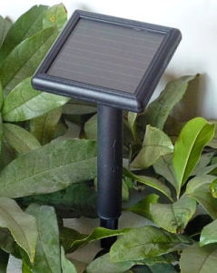 Solar Panels with Battery and Controller Amorphous pictures & photos