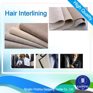 Hair Interlining for Suit/Jacket/Uniform/Textudo/Woven P-White pictures & photos