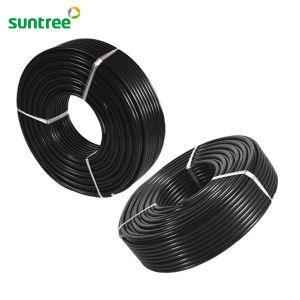 UV Resistance XLPE Double Insulation 10mm2 Solar Cable pictures & photos
