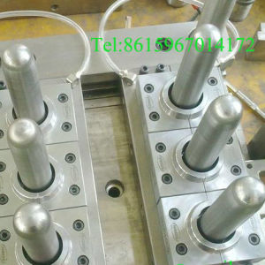 Pet Preform Mould (150506)