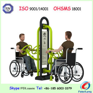 Body Disabled Butterfly Building Outdoor Fitness Equipment pictures & photos