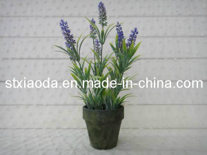 Artificial Plastic Lavender Bonsai (XD13-231)