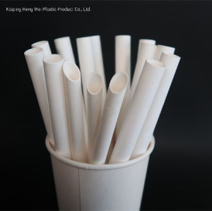 100 Pc 2 Different Colors Biodegradable Bamboo Print Paper Drinking Straws For J