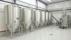 200L, 500L, 1000L Beer Equipment for Beer Fermenting and Brewing pictures & photos