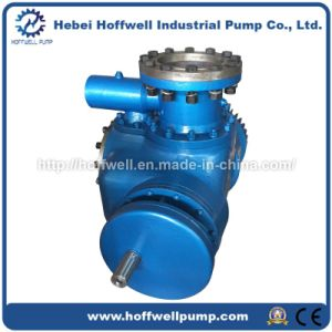 Multi-phase Twin Screw Fuel Pump pictures & photos