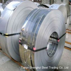 Premium Quality of Stainless Steel Strips (321) pictures & photos