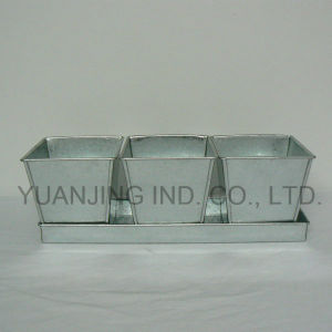 Garden Galvanized Set 3 Square Pots on Tray for Plants