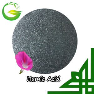 Organic Humic Acid Chelated Manganese pictures & photos