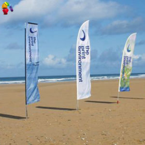 Flying Advertising Feather Beach Flag pictures & photos