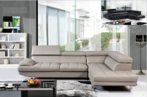Modern Leather Sofa with Genuine Leather L Shape