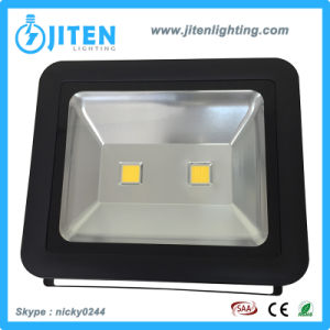 30W/50W/100W COB Outdoor Floodlight LED Flood Light Ce RoHS SAA pictures & photos