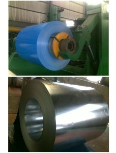 Prepainted, Coated Steel Coil for Building Material