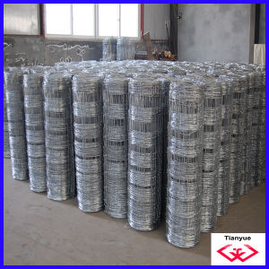 Hot Dipped Galvanized Grassland Fence (TYD-098) pictures & photos