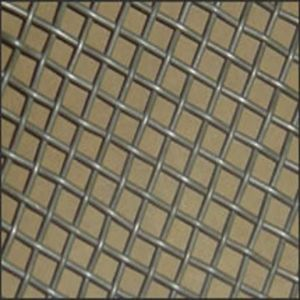 Electro Galvanized Iron Wire Mesh pictures & photos