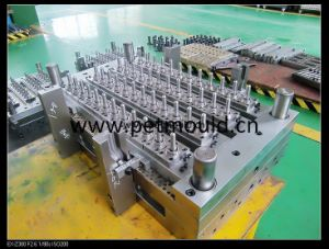 48 Cavities Pet Preform Mould (HX-11) pictures & photos
