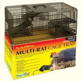 Multi-Rat Mouse Traps