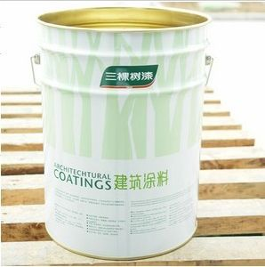 Self-Cleaning Silicon Protective Exterior Paint