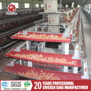 Hot and Cold Galvanized Poultry Layer Cage pictures & photos