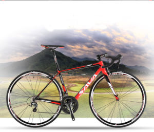 2016 New Fashion Carbon Fiber Road Bicycle with 700c Size