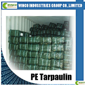 Tarpaulin PE Plastic Sheet/PE Tarpaulin Roll/PE Tarpaulin China pictures & photos