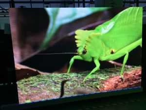 P2.5 Indoor High Resolution for Advertising /LED Display for Indoor