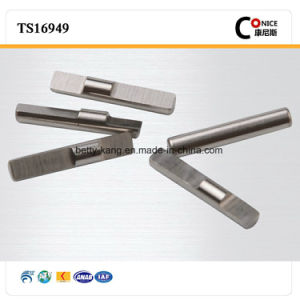 China Supplier Non-Standard Precision Micro Shaft pictures & photos