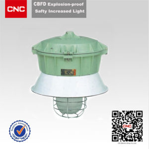Explosion Proof Light (CBFD) pictures & photos