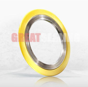 Spiral Wound Gasket with Outer Ring, Cg, Swg