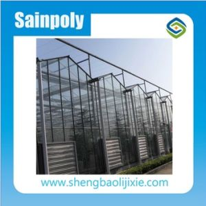 Professional Factory Glass/Plastic Film/PC Sheet Greenhouse and Cooling/Heating System pictures & photos