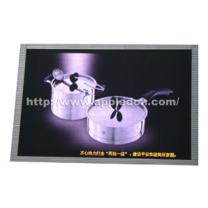 P12 Outdoor Dip Full Color LED Display