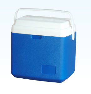 Cooler Box, Ice Box, 12L, Cooler Box pictures & photos