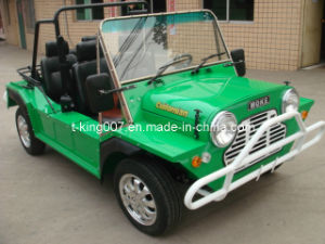 Electric Moke Car