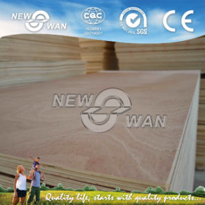 Door Skin Size Veneer Plywood (MR, Melamine, WBP, E1, E2) pictures & photos