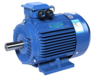 0.55~250kw Yjt High Efficiency Three Phase Induction Motor pictures & photos