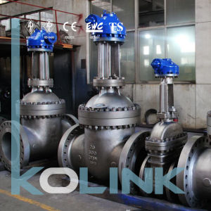 Stainless Steel Gate Valve Cast Stainless Steel