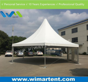 10X10m Hexagonal Marquee Party Tent for Yoga, Auto Show, Trade Show