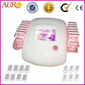 Professional Lipo Laser Body Fat Reducing Equipment for Sale pictures & photos
