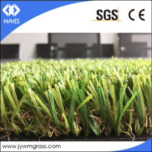 35mm Wshape Artware Artificial Turf Grass pictures & photos