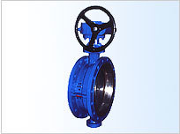 Double Flanged Metal Seal Butterfly Valve pictures & photos