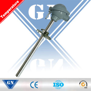 Armored Thermocouple with Movable Flange (CX-WR) pictures & photos