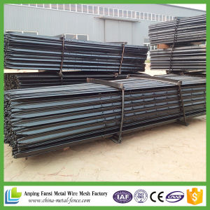 1.58kg/M Steel Y Post with Best Price